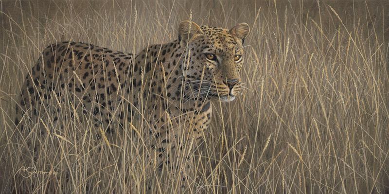 African – In the Tall Grass by Adam Smith