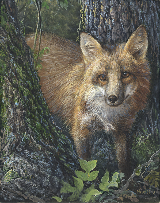Fox by Laura Mark-Finberg