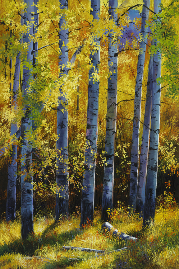 Aspen Stand by Andrew Kiss