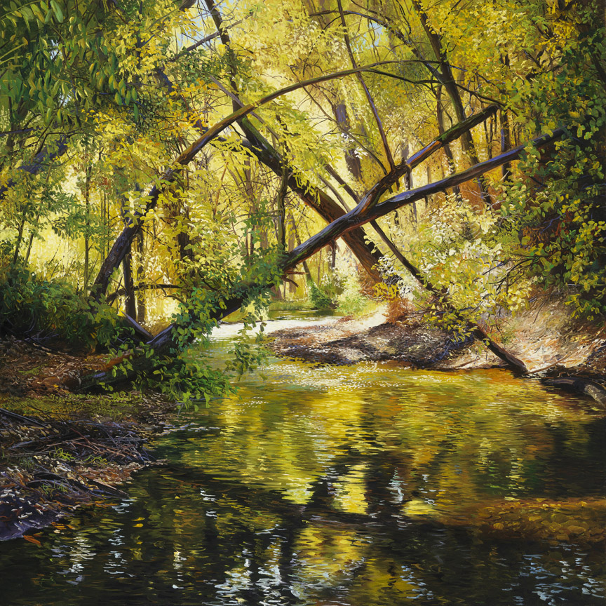 Shaded Stream by Andrew Kiss