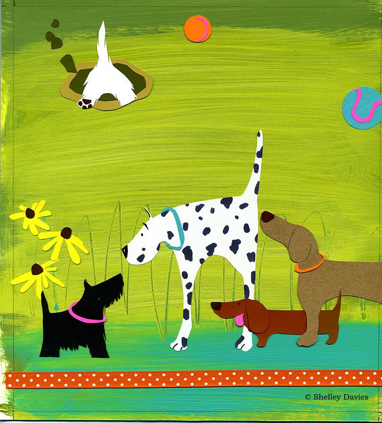 Animals – Boulevard Dog Park © Shelley Davies