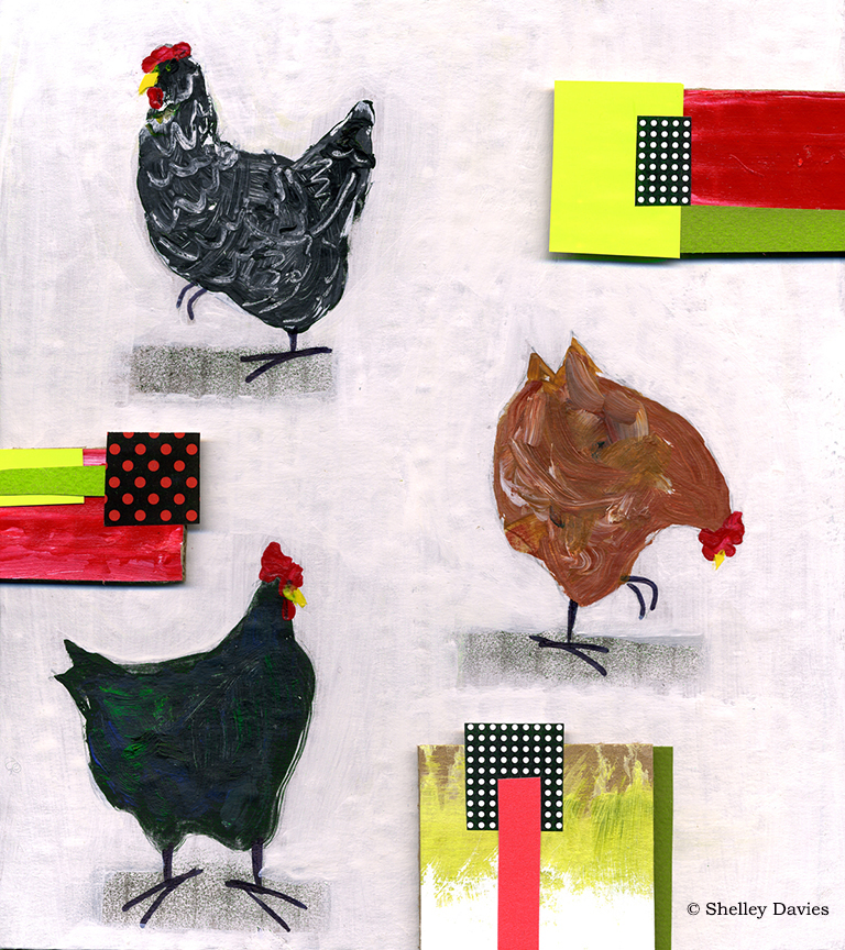 Animals – Urban Chickens 2 © Shelley Davies