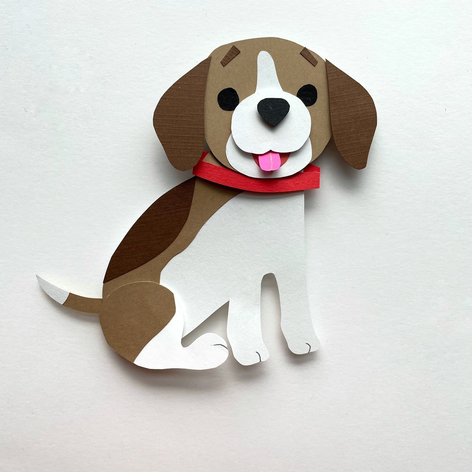 Dogs-Beagle © Shelley Davies