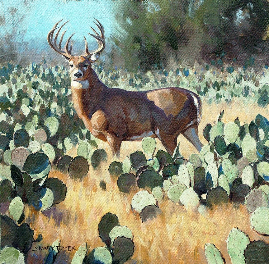 Whitetail in Cactus 2 © Jimmy Dyer