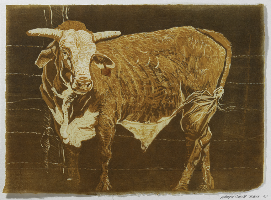 After the Rodeo © Melinda Whipplesmith Plank